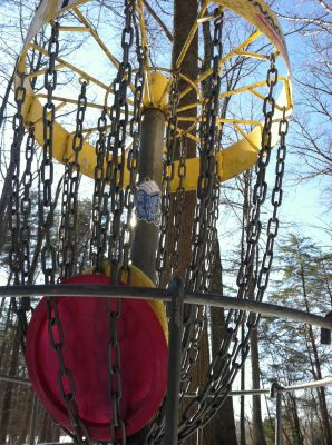 Burke Lake Park, Main course, Hole 7 Alternate pin