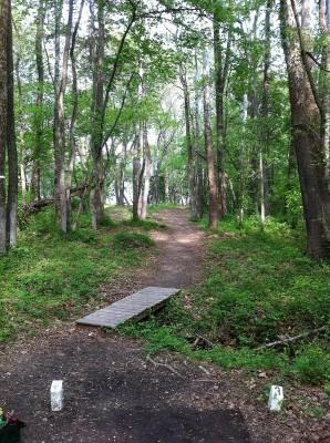 Pratt Park, Main course, Hole 3 Tee pad