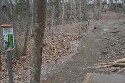 Peaks View Park, Main course, Hole 14 Tee pad