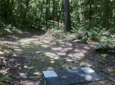 Signal View, Main course, Hole 6 Short tee pad