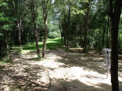 Oshtemo Township Park, Main course, Hole 7 Reverse (back up the fairway)