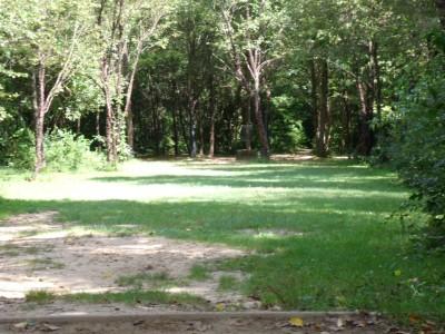 Oshtemo Township Park, Main course, Hole 8 Short tee pad