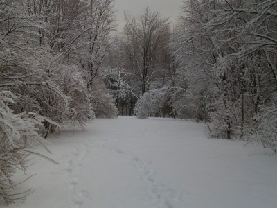 Oshtemo Township Park, Main course, Hole 6 Short tee pad