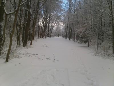 Oshtemo Township Park, Main course, Hole 2 Short tee pad