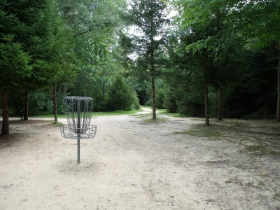 Oshtemo Township Park, Main course, Hole 15 Reverse (back up the fairway)