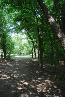 Gillies Creek Park, Main course, Hole 8 Tee pad