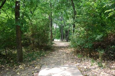 Gillies Creek Park, Main course, Hole 11 Tee pad
