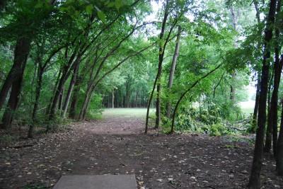 Gillies Creek Park, Main course, Hole 15 Tee pad
