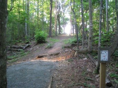 Sontag, Main course, Hole 7 Middle tee pad
