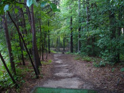 The Blockhouse Disc Golf Country Club, Main course, Hole 12 Tee pad