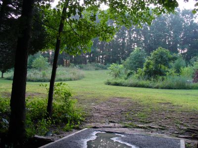The Blockhouse Disc Golf Country Club, Main course, Hole 15 Tee pad
