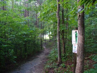 The Blockhouse Disc Golf Country Club, Main course, Hole 18 Tee pad