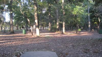Bayville Park, Main course, Hole 4 Tee pad