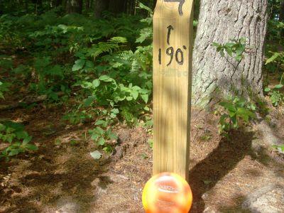 Log Lake Park, Main course, Hole 7 Hole sign