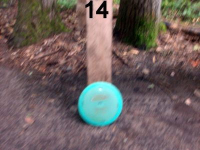 Log Lake Park, Main course, Hole 14 Hole sign