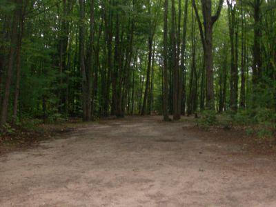 Log Lake Park, Main course, Hole 2 Tee pad
