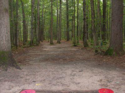 Log Lake Park, Main course, Hole 10 Tee pad