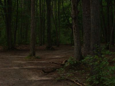 Log Lake Park, Main course, Hole 14 Short approach