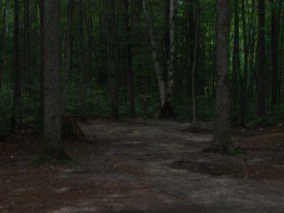 Log Lake Park, Main course, Hole 14 Putt