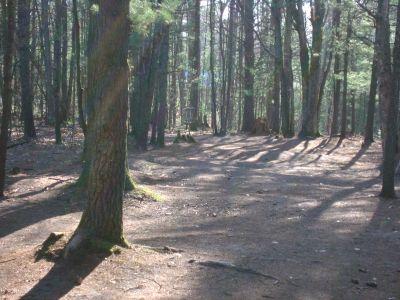 Log Lake Park, Main course, Hole 11 Midrange approach