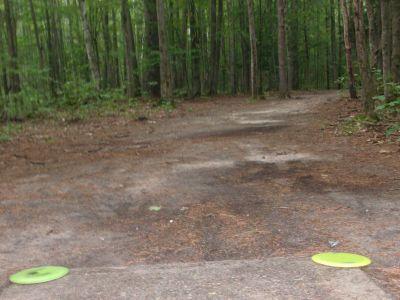 Log Lake Park, Main course, Hole 13 Tee pad