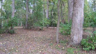 New Quarter Park, Main course, Hole 7 Short approach