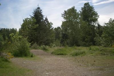 White River, Main course, Hole 15 Long tee pad