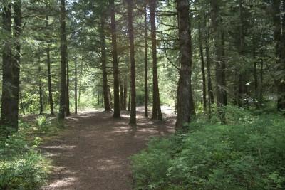 White River, Main course, Hole 9 Long tee pad