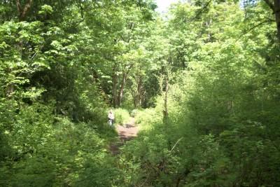White River, Main course, Hole 4 Long tee pad