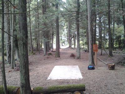 HJ Carroll Park, Main course, Hole 2 Tee pad