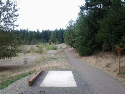 HJ Carroll Park, Main course, Hole 8 Tee pad