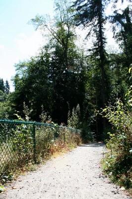 Terrace Creek, Main course, Hole 12