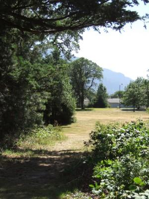 North Bonneville DGC, Main course, Hole 8 Tee pad