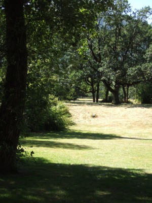 North Bonneville DGC, Main course, Hole 12 Tee pad