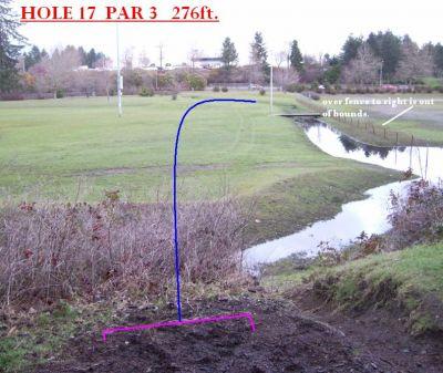 Yauger Park, Main course, Hole 17 Tee pad