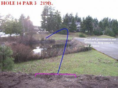 Yauger Park, Main course, Hole 14 Tee pad