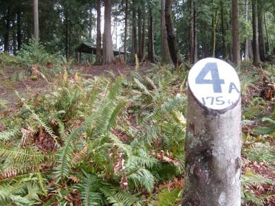 Van Zee Park, Main course, Hole 4 Tee pad