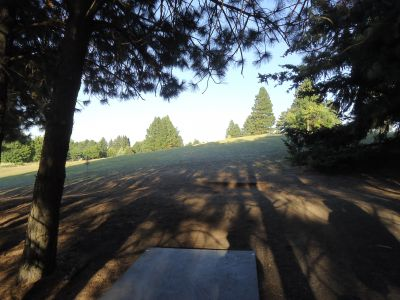 Sunnyside Park, Main course, Hole 8 Tee pad
