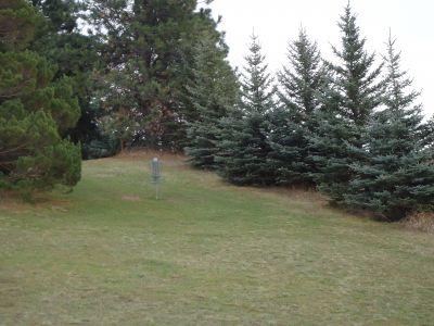 Sunnyside Park, Main course, Hole 5 Midrange approach