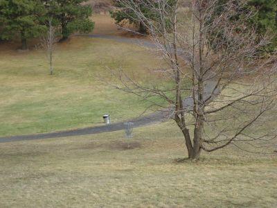 Sunnyside Park, Main course, Hole 12 Midrange approach
