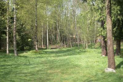 Seatac DGC, Main course, Hole 13 Midrange approach