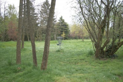 Seatac DGC, Main course, Hole 5 Putt
