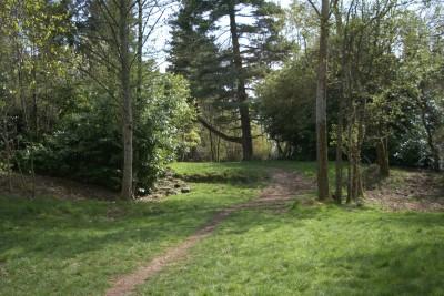Seatac DGC, Main course, Hole 15 Long approach