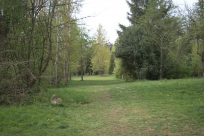 Seatac DGC, Main course, Hole 1 Tee pad