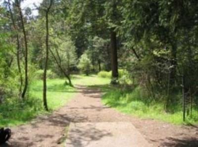 Fort Steilacoom Park, Northwest Course, Hole 4 Tee pad