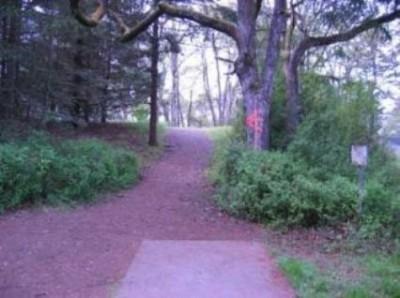 Fort Steilacoom Park, Northwest Course, Hole 18 Tee pad