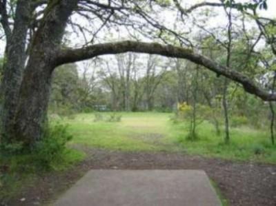 Fort Steilacoom Park, Northwest Course, Hole 16 Tee pad