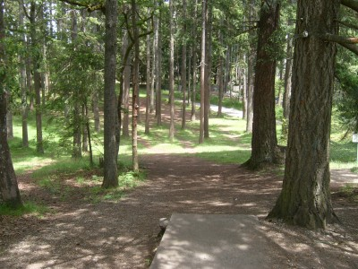 Fort Steilacoom Park, Northwest Course, Hole 1 Short tee pad