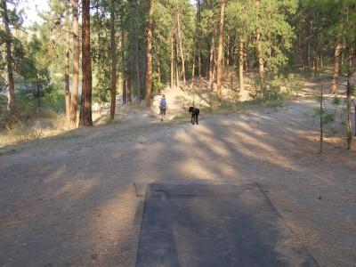 Downriver, Main course, Hole 7 Tee pad