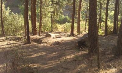 High Bridge Park, Main course, Hole 5 Midrange approach